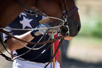 "<span style=""font-size:14px;"">Texas Polo Player"