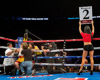 "<span style=""font-size:14px;"">Ring Girl"