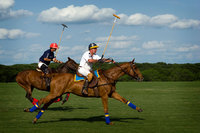 "<span style=""font-size:14px;"">Playing Polo"
