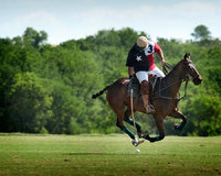 "<span style=""font-size:14px;"">Polo Player"